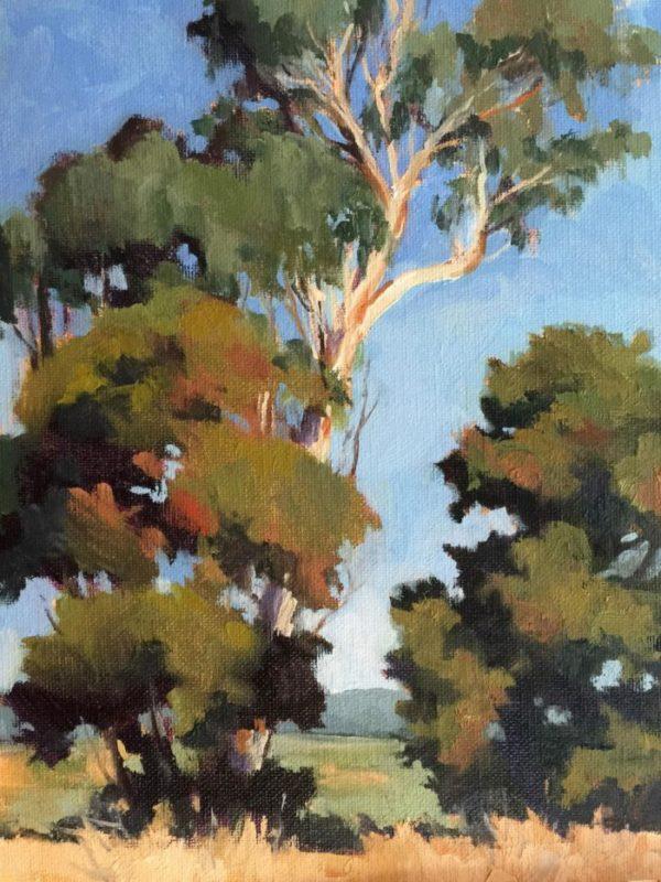 Laguna Plein Air Artist Julia Seelos - Eucalyptus Glory