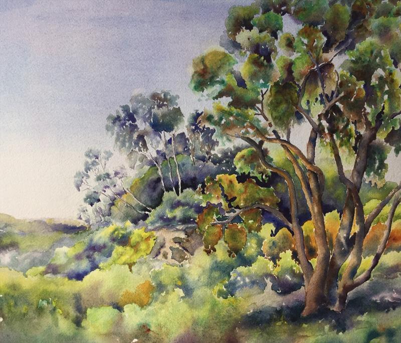 "Jennie Dillon's ""College Drive Eucalyptus"""