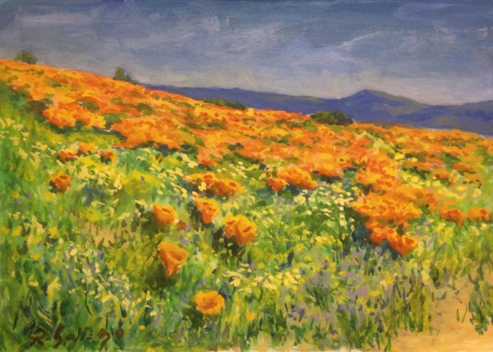 Poppies by Laguna Plein Air Artist Rich Gallego