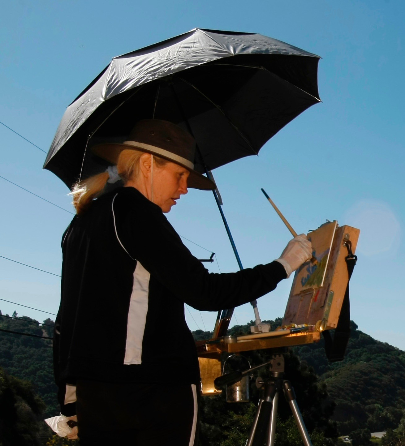 Laguna Plein Air Artist Sharon Weaver