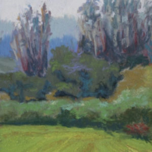 LPAPA Artist Member Lisa Skelly