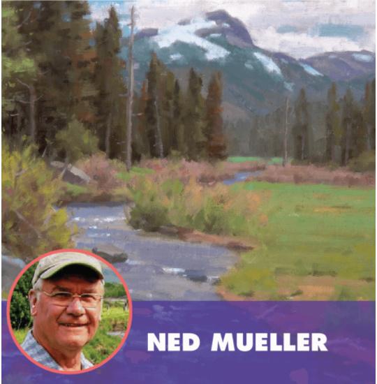 PleinAir Live Ned Mueller