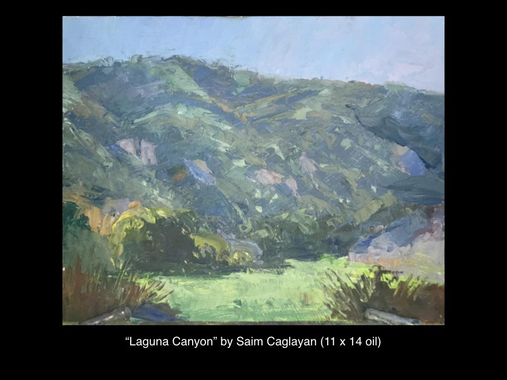 Saim Caglayan